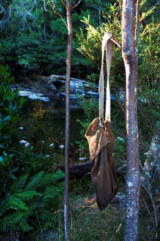 bag in tree